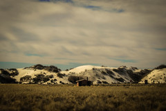 Small building outside of White Sands (OpersembeArt) Tags: road new trip usa white house newmexico building colors field sign clouds barn america canon mexico us sand warm quiet farm whitesands dunes shift roadtrip hut stop fencing sands tilt meloncholy tiltshift 700d canon700d