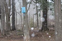 IMG_0405 ( Szczep Wodny Batyk ) Tags: zima wiosna brucetrail snieg wedrowka szczepwodnybaltyk szczepbaltyk silvercreekconservationarea wedrownicy druzyna16ta starsiharcerze