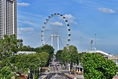 Singapore Flyer (chooyutshing) Tags: singapore ferriswheel marinabay observationwheel touristsattraction rafflesboulevard singaporeflyer aerialviewing 164mhigh