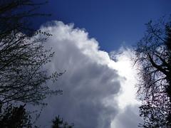 Nuages d'avril (vanaspati1) Tags: nuages avril 2016 vanaspati1