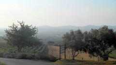 Ernie Els Wines (RobW_) Tags: southafrica march saturday ernie els stellenbosch wines westerncape 2016 05mar2016
