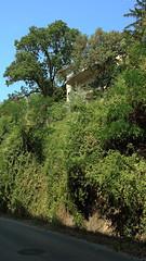 Trsashz a hegyoldalban / Condominium in the hillside (bencze82) Tags: budapest mm 20 hillside buda condominium voigtlnder f35 colorskopar trsashz slii hegyoldalban