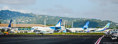 A V I O N S (Maxime C-M ) Tags: from paris france west tarmac french se airport poste skies martinique tx aviation air parking airplanes ss des 330 queen special international commercial airbus corsair vs boeing piper af airways 777 reine carrier 747 a330 cessna orly intl b747 aircrafts cdg crl heavies indies the livery caraibes 744 aroport compagnies 332 b777 fdf generale afr 972 airs fwi a332 madinina b744 xlf ariennes skyteam arogare tfff 77w mastodonte of livre xlcom b77w