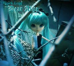 Dear Alice (Doll Angel (Nicole)) Tags: music julia sade alexia ethan albums 4eyes blackleaf dollangelbandblackleaf
