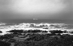 Winter Storm, Bean Hollow Beach (Postcards from San Francisco) Tags: california leica film analog trix m6 winterstorm sanmateocounty beanhollowbeach