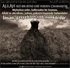 Kerim Kur'an (Oku Rabbinin Adiyla) Tags: world heaven god being islam religion bible genesis allah quran verse kuran ayet ayetler