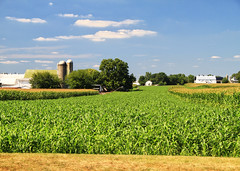 Pennsylvania Farmland (` Toshio ') Tags: usa house field farmhouse barn rural america corn farm country farmland silo 7d lancastercounty toshio pennyslvania