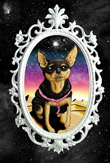 18 x 24 (_Loaf_) Tags: sunset dog plant cute art colors animal digital photoshop painting puppy stars mirror miniature sand arte pyramid awakening little drawing space kunst egypt bamboo galaxy frame stylus psychedelic healing wacom giza pinscher starship terence mckenna entheogen galexy stuffedanimalbrigade loafstars