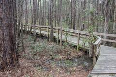 DSC_2724 (Bob Carlson) Tags: park state falling waters