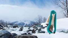 scenery the Oito Line (NOZOMUN_SHBVD) Tags: winter snow toys sigma30mmf14dc dd volks hakuba   x5 hatsune  miku  dollfiedream bfigure jfigure  hatsunemiku oitoline  dd