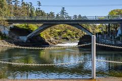 DSC_7317.jpg (Cameron Knowlton) Tags: ocean bridge canada water canal nikon bc victoria rapids inlet gorge narrows tillicum reversing d610 reversingrapids camosack tillicumnarrows canalofcamosack