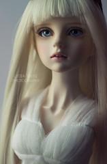 Blondie (Lydia Tausi Photography) Tags: white canon 50mm doll dolls dress sweet wayne longhair wig blonde innocence bjd fragile abjd balljointeddoll sd13 sweetgale eos500d lydiatausi crobidoll kanisaugen cristaleyes aprilstory giasforza waynesweetgale
