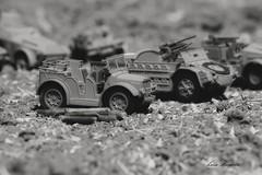Trattore TL 37 - 1944 (lumun2012) Tags: bw macro monocromo war military models biancoenero lucio monocrome veicles mundula