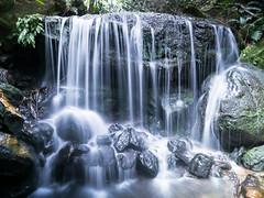 Blue Mountains (.J U L I E.) Tags: blue mountains nature waterfall australia australie