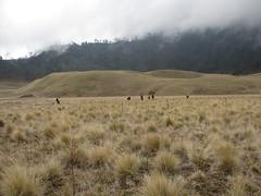 IMG_7267 (rijaalfa) Tags: park mountain lake national gunung taman bromo semeru tengger nasional ranu mahameru kumbolo