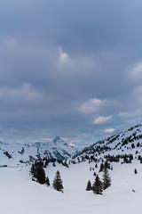 20160324-DSC06217 (Hjk) Tags: schnee winter ski sterreich schrcken warth vorarlberg