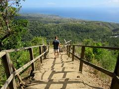 Malcolm descends (oobwoodman) Tags: path steps hike trail caribbean sentier stlucia naturewalk pfad carabes westindies karibik saintlucia tetpaul