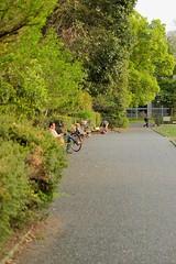 DSCF2285 (keita matsubara) Tags: park japan museum  saitama  urawa   kitaurawa