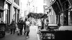 The Hague NL 2016 (Freestyle photographer AFH) Tags: streetscene r fujifilm wr xt10 xf35mmf2