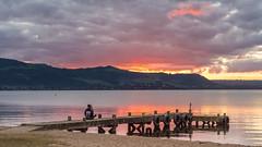 SUnset @ Holden Bay, Rotorua, New Zealand (Dave n Laura) Tags: road new trip family trees sunset sky cloud lake bird nature beautiful bay spring rotorua peaceful zealand nz redwood geothermal thermal