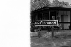 Vinewood (samdabull) Tags: blackandwhite om1 olympusom1 50mmf14zuiko