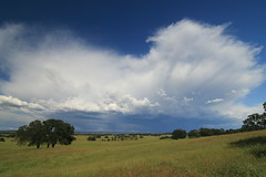 May showers bring . . . . . . May flowers (trifeman) Tags: california foothills clouds canon spring may jackson sierra tokina 7d storms amador 2016 ione tokina1116mm canon7dmarkii