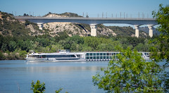 Pont TGV Avignon (Rmi Avignon) Tags: bridge pont rhone