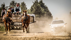 Running (fran_1911) Tags: auto life sky horses men argentina argentine car rural america caballo la earth south religion amish vida campo carro colonia irt hombre esperanza pampa tierra menonita