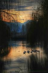 L'ora dei racconti (swaily ◘ Claudio Parente) Tags: lago nikon abruzzo d300 nikond300 swaily