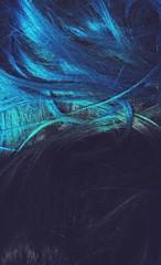 cabelo (Natalia Sapienza) Tags: verde azul laranja vermelho marrom lilas camposdojordao breto