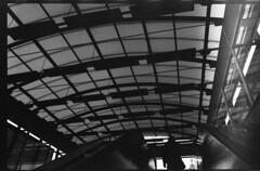 img782 (Vlad Ciutacu) Tags: white black film 35mm nikon minolta f100 400 romania neopan bucharest x700 fujifilmneopan400