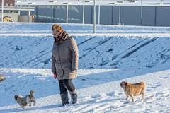 20160116-3217 (Sander Smit / Smit Fotografie) Tags: winter sneeuw delfzijl sneeuwpret slee winterweer