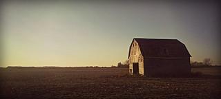 Long Field, Long Day