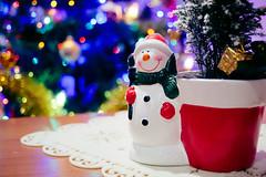 151220-6542 (Dariusz Noskowicz) Tags: xmas light tree bokeh snowmen 20 50 smc pentaxa