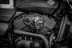 Harley-Davidson Street 750 (cheruvadiyan) Tags: bw india bike closeup chopper fuji kerala harley harleydavidson motorcycle fujifilm davidson calicut kozhikode x100t