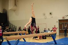 JRJ-6382 (shutterbug3500) Tags: gymnast gymnastics