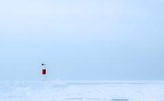 Lake Michigan Marker Tower (t5909sw) Tags: winter cold ice frozen michigan overcast minimal lakemichigan t5909sw