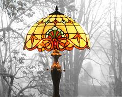 Brume et lumire / Mist and light (universeau) Tags: mist brume brouillard fog lumire lampe lamp light hiver winter clairage tiffany couleurs color verre mozaque lectrique jour coloursplosion