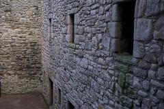 DSC_7709 (seustace2003) Tags: uk castle scotland edinburgh alba united kingdom edimburgo edinburgo schotland scozia cosse craigmillar koninkrijk verenigd grootbrittanni