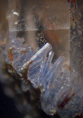 Dumortierite Inclusions In Quartz (Sea Moon) Tags: blue crystals mineral inside needles specimen included penetrating micromount intergrown acicular