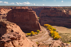 Canyon de Chelly (Squirrel Girl cbk) Tags: october sandstone az canyondechellynationalmonument chinle 2013 goldencottonwoods