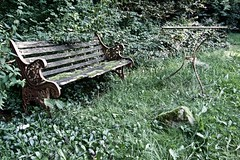 Lost in time ... the bench (mikehaui60) Tags: pen bench mft epm2 olympuspenepm2