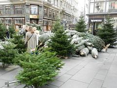 DSCN1059 (Paul Easton) Tags: vienna wien christmas december market gluhwein weinacht
