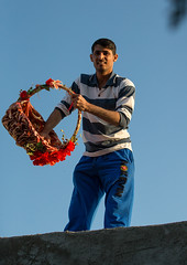 man throwing sweets from the house roof to the children during a wedding ceremony, Qeshm Island, Salakh, Iran (Eric Lafforgue) Tags: wedding people man men vertical rural outdoors photography asia basket iran muslim islam traditional ceremony culture traditions marriage persia folklore celebration gifts giving sweets donation custom gratitude cultures adultsonly cultural oneperson islamic middleeastern persiangulf sunni generosity donating qeshmisland menonly 20sadult youngadultman hormozgan lookingatcamera  bandari onemanonly  1people  iro straitofhormuz  colourpicture  salakh iran034i9540