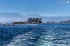 Janson Island and George Fraser Islands (dieLeuchtturms) Tags: sea canada fog america meer nebel britishcolumbia vancouverisland northamerica amerika ucluelet kanada 3x2 pazifik seafog barkleysound nordamerika pacificrimnationalparkreserve seenebel