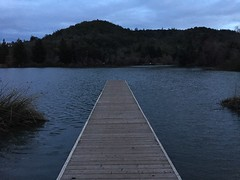 Spring Lake Dock in Winter (Andrew Hidas) Tags: winter lake dock moody sonomacounty springlake boatlaunch grayday