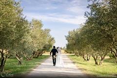 28072012-DSC_0079 (1).jpg (Snowstorm_41-80) Tags: marie mariage etienne vigne olivier