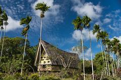 Aimeliik Bai (Warriorwriter) Tags: building men architecture island day cloudy culture meetinghouse palau pw micronesia oceania aimeliik