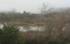 Outlet End (brian dean bollman) Tags: sonomacounty riparian springlake santarosaca springlakecountypark