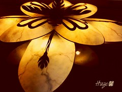 Exposure (Haze0709) Tags: lighting light lamp warm exposure